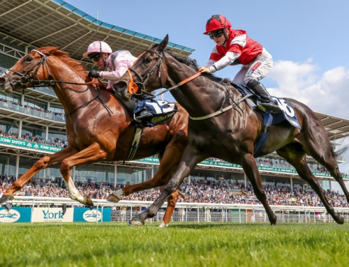 Royal Intervention takes Group 3 prize