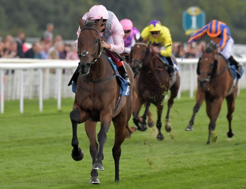 Lah Ti Dar lands York Group 2