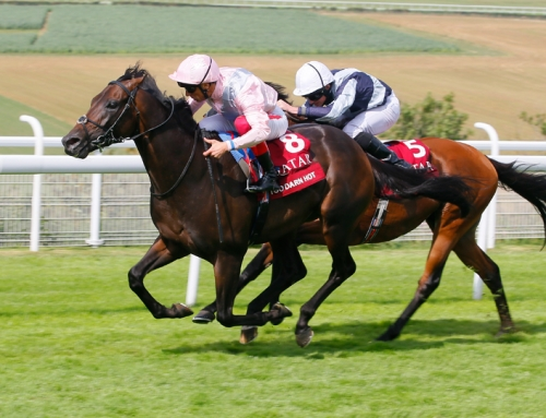 Too Darn Hot lands Sussex Stakes